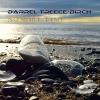 Darrel Treece-Birch   No More Time