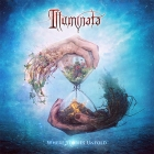 Illuminata | <em>Where Stories Unfold</em>