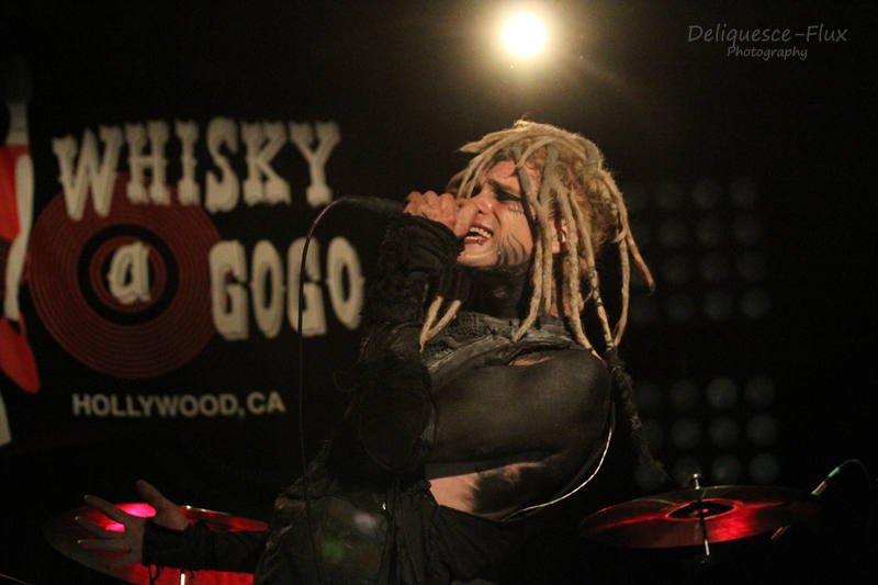 Davey Suicde 2013