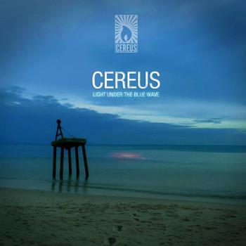 Cereus Light Under The Blue Wave