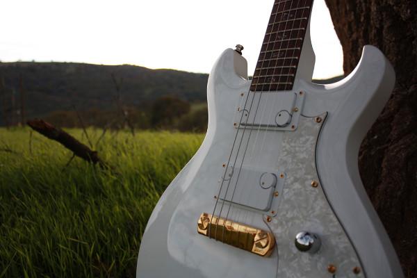 Dialtone Pickups - Guitar